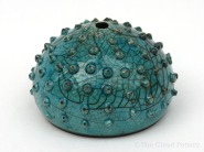 URCHIN4julietmacleod2014
